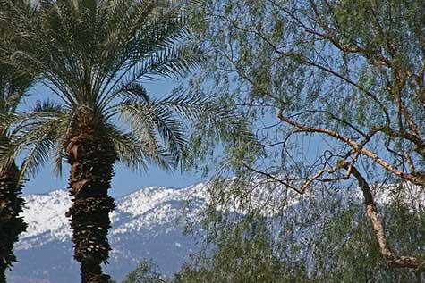 Palm Desert Mountains