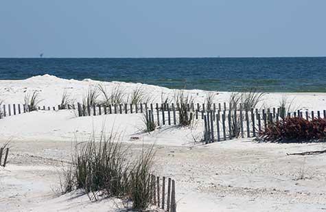 fort morgan sand dunes