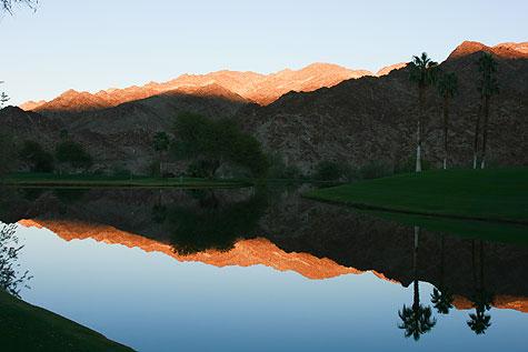 palm desert reflections
