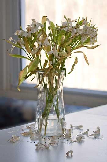 sad looking bouquet