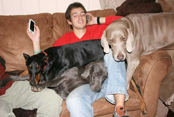 texas-dogs-3465