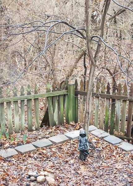 backyard-scenes-5986