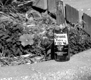 Corona Black and White