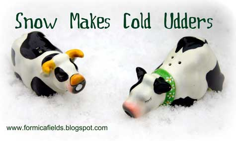 snow makes cold udders