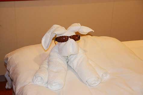 towel puppy