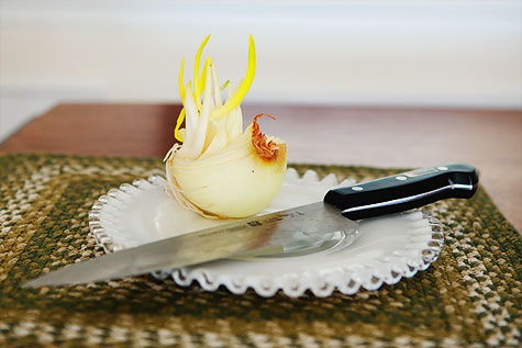 chihuly-onion-1