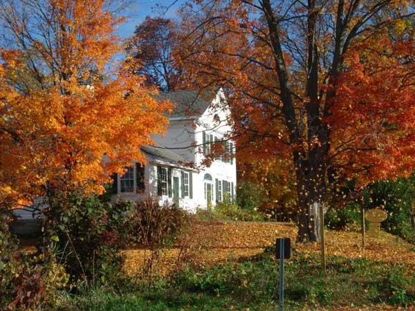 Studio Autumn