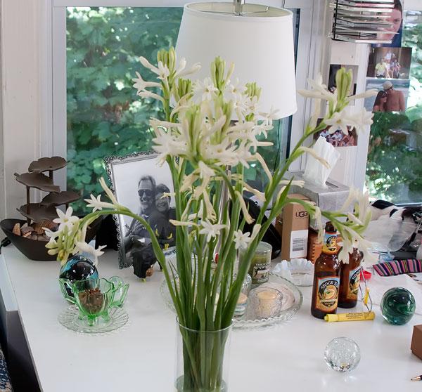 SuperGuy Flower Photo