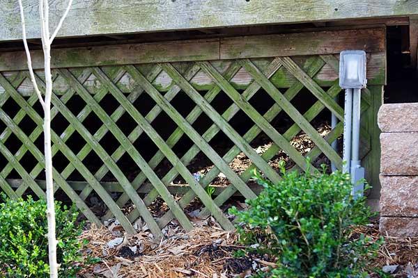 backyard-2-6265