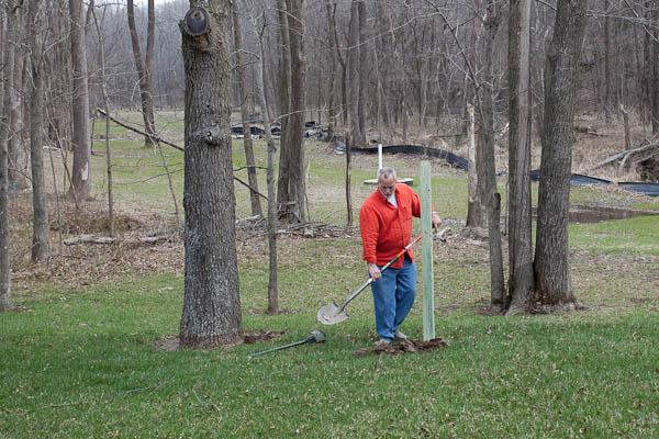 putting the bird feeder