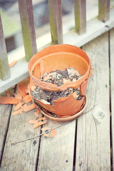 clay-pot-6979