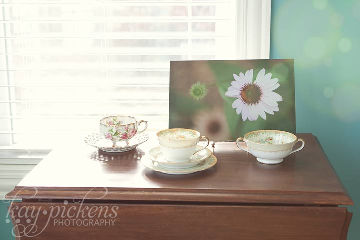 fine art photograph and antique china