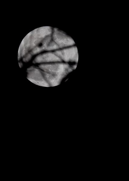 full-moon-3602