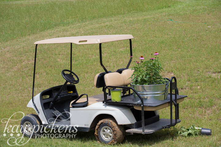 golf cart for planting the farm