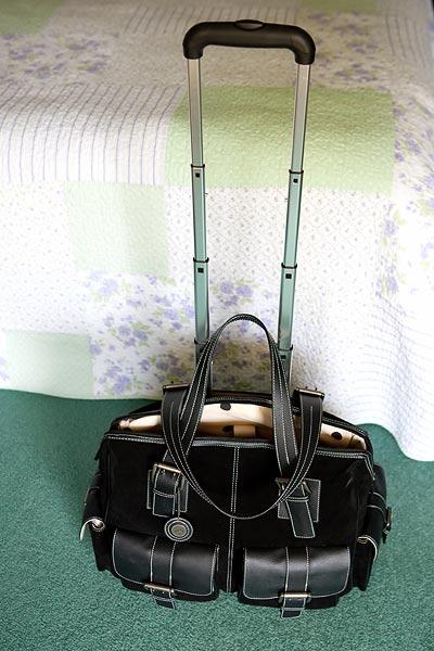 jill-e-rolling-bag-8027