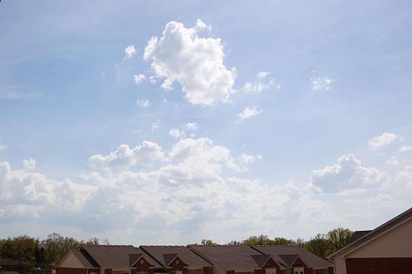 sunny-skies-6498