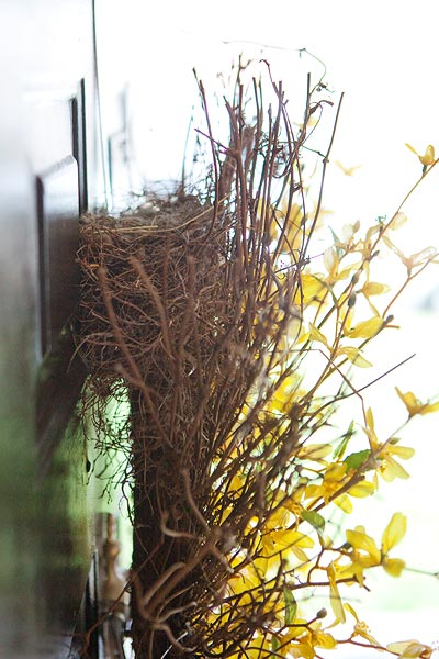 wreath-birds-nest-6040
